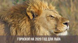 Horoscope 2020 pour le Lion