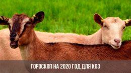 Horoscope 2020 pour les chèvres