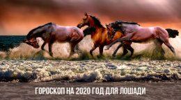 Horoscope 2020 pour les chevaux