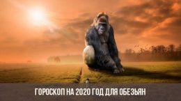 Horoscope 2020 pour les singes