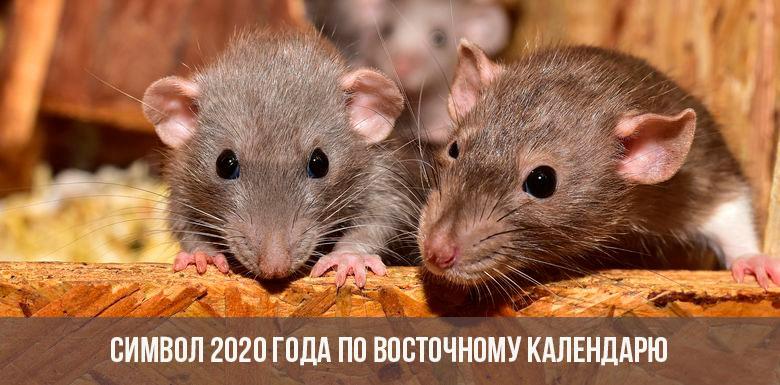 Symbole de l'année 2020 sur le calendrier oriental