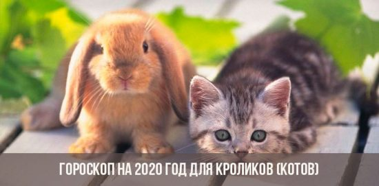 Horoscope 2020 pour Lapins (Chats)