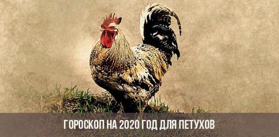 Horoscope 2020 pour les coqs
