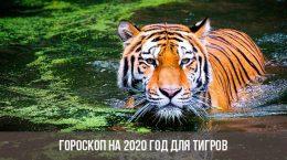 Horoscope 2020 pour les tigres