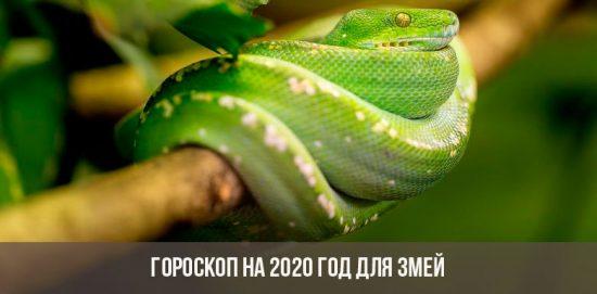 Horoscope 2020 pour les serpents