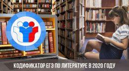 Codificateur de l'examen dans la littérature en 2020