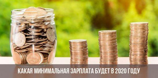 Le salaire minimum en Russie en 2020